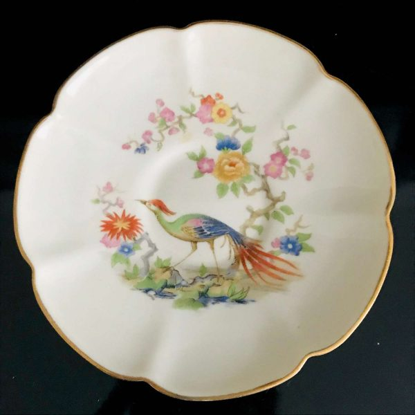 Antique Demitasse Tea cup and saucer Lenegia Crown bird of Paradise fine bone China French late 1800's collectible farmhouse vivid colors
